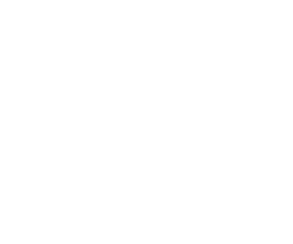 8-LifeVillage-BW